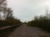 Railroad tracks on Section Five.